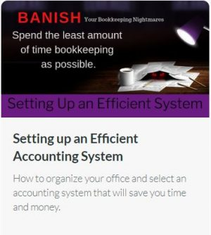 Setting up an Efficient Accounting System:  How to organize your office and select an accounting system that will save you time and money.