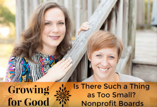 Is There Such a Thing as Too Small? Nonprofit Boards