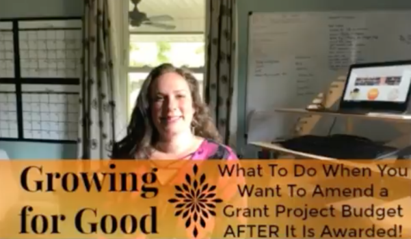 What To Do When You Want To Amend a Grant Project Budget AFTER It Is Awarded!