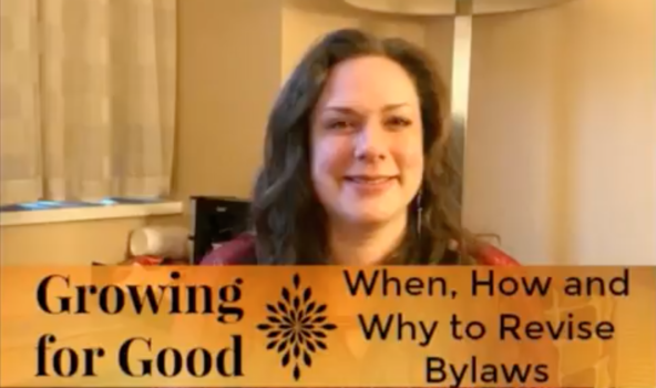 When, How and Why to Revise Bylaws