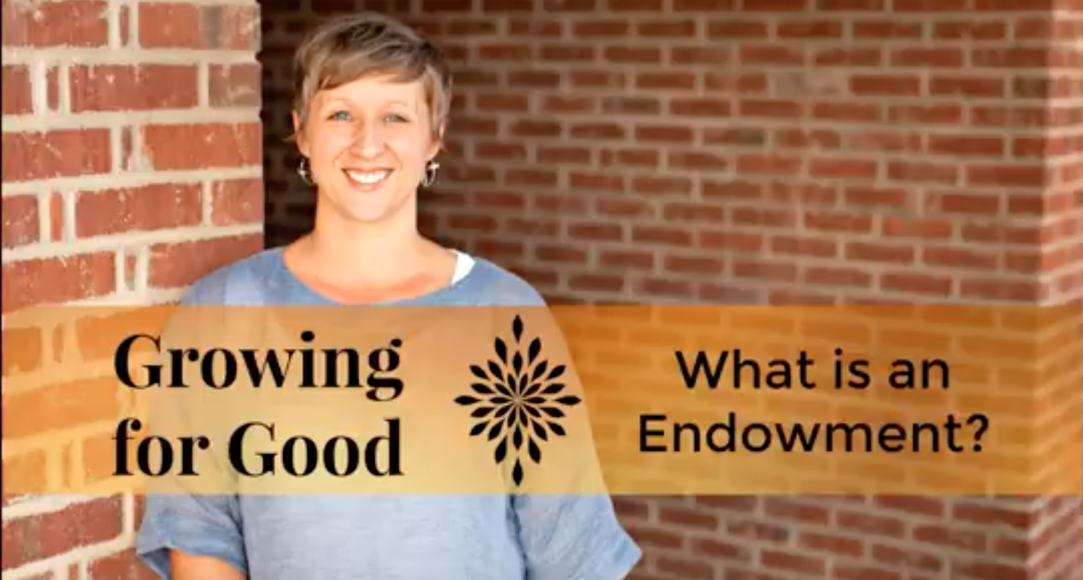 What is an Endowment?