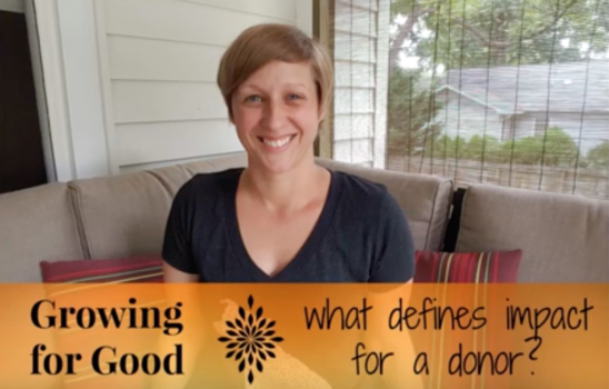 What Defines Impact for a Donor